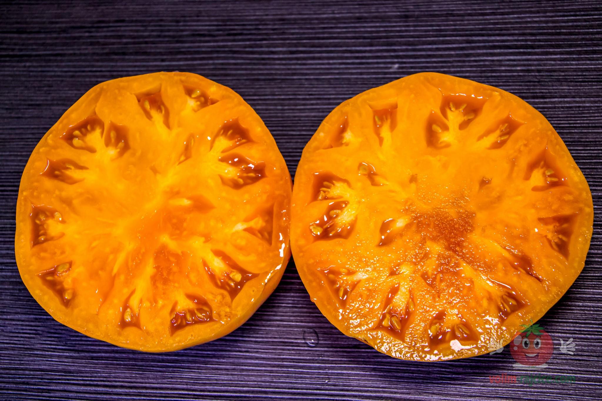 Orange Jazz
