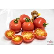 Red Cherry Sanya