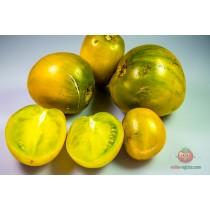 Green Erika Apple [F5] ili [F6]